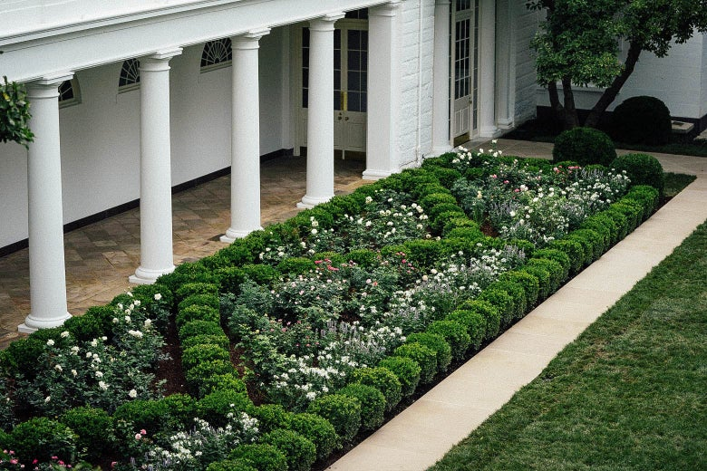 A view of the recently renovated Rose Garden at the White House