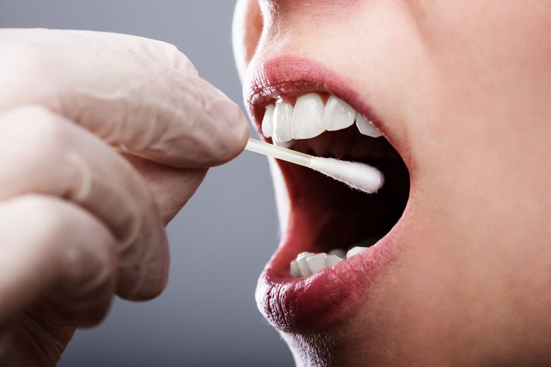 Stock image of a gloved hand directing a cotton swab into a person's open mouth for a DNA swab.