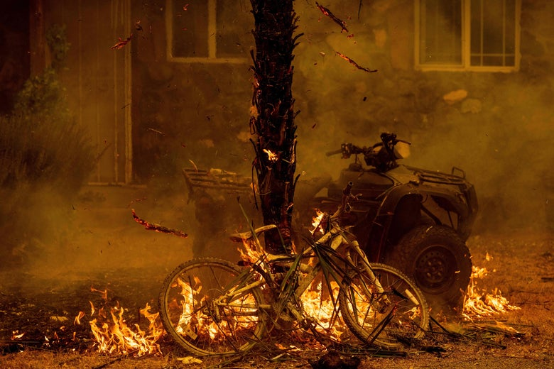 A bicycle and palm tree burn outside of a house.