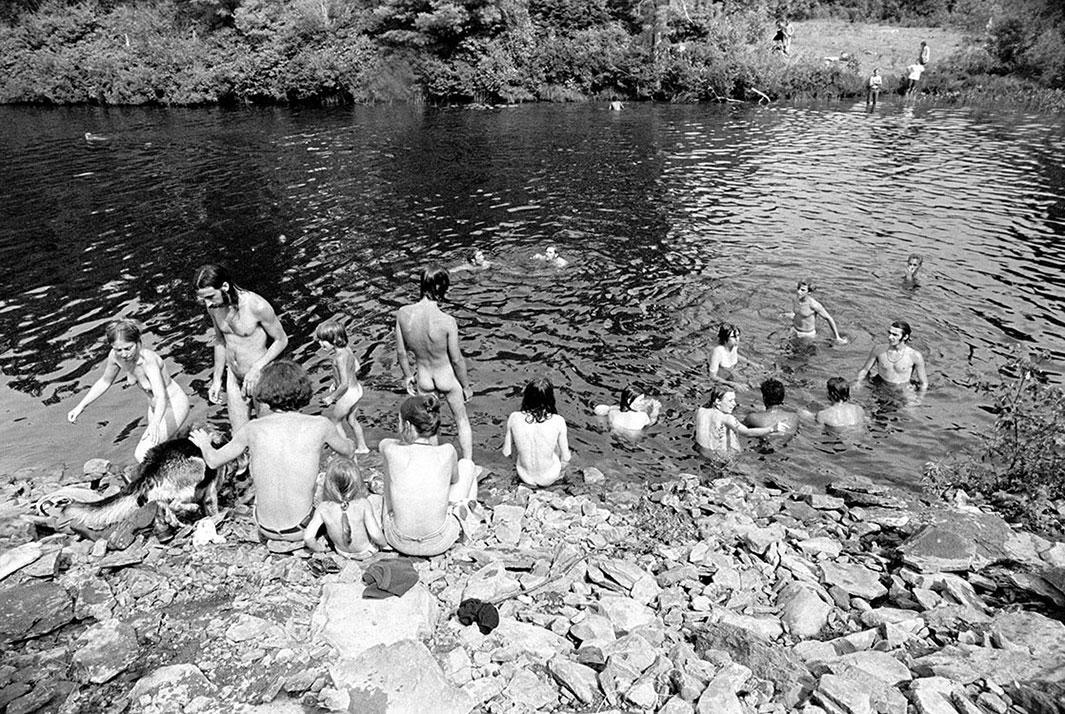 Woodstock 69444-17