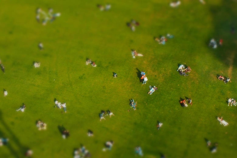 People in a park.