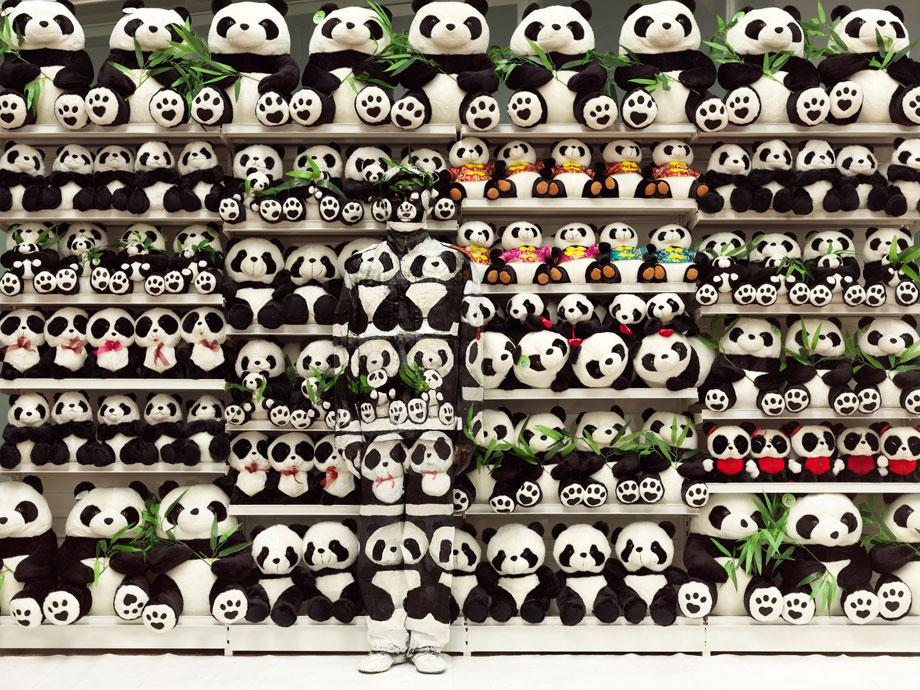 Hiding in the City no. 101 Panda, 2012