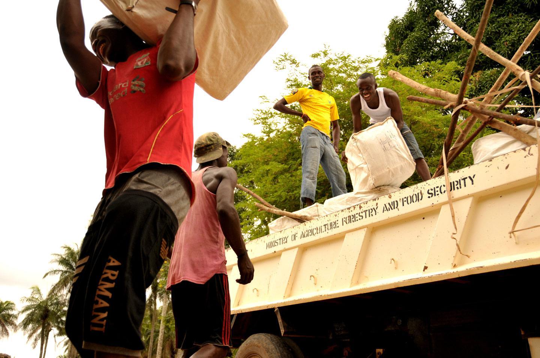 Sierra Leone's Free Health Care Initiative mosquito nets