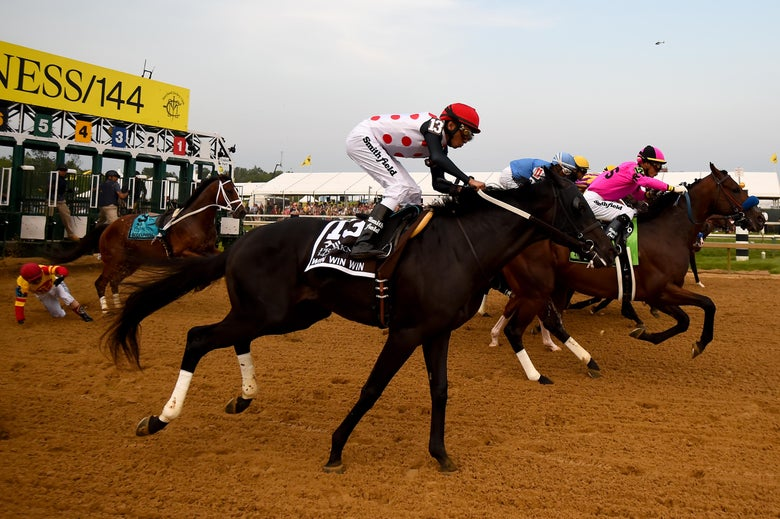Jockey-Less Horse Wins Our Hearts, Loses the Preakness Stakes
