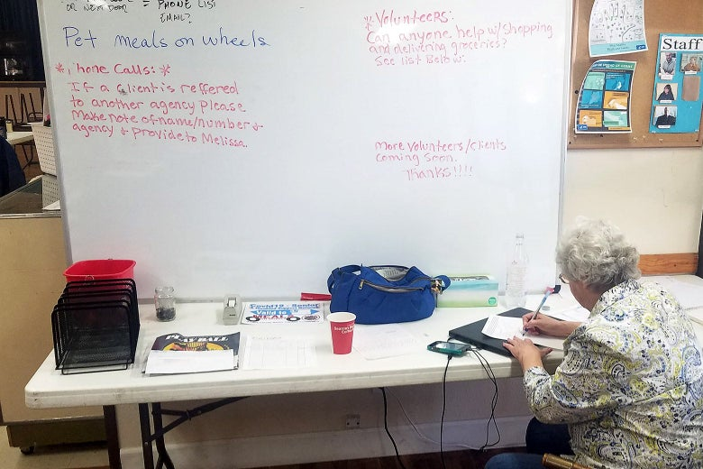 A volunteer in front of a white board.