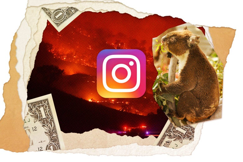 Collage of Australian wildfires, a koala, fragments of a dollar bill, and the Instagram logo.