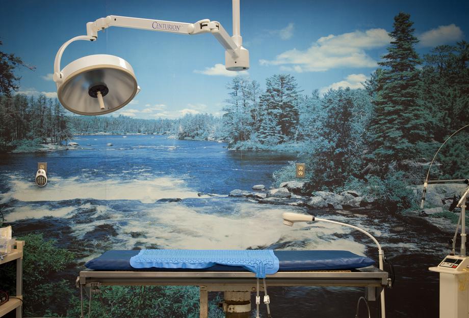 Flannery Animal Hospital, Operating Room, 2009