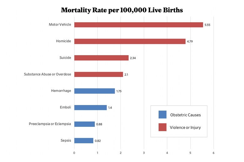 A chart depicting mortality rate per 100,000 live births.