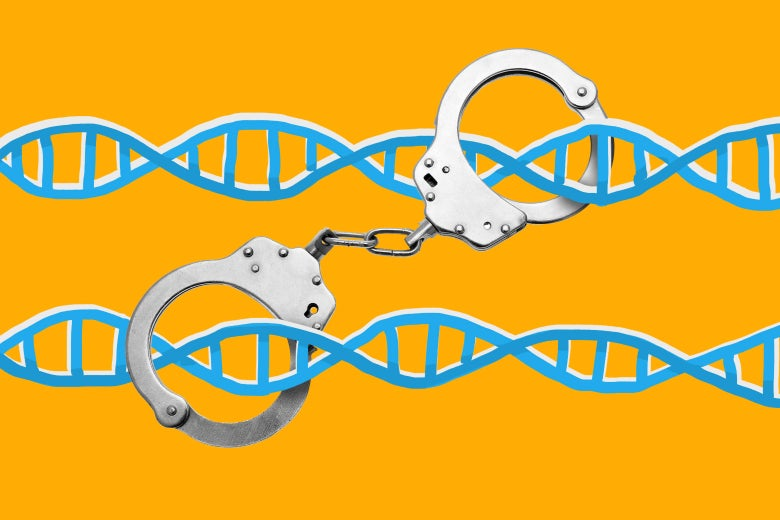 DNA in police handcuffs.