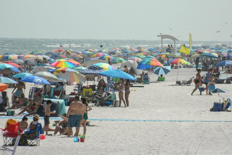 Many people crowded on a beach on a foggy day.
