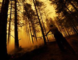 Russian wildfire. Click image to expand.