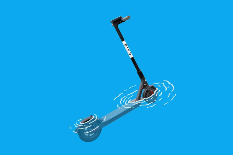 Photo illustration: The top of a bird scooter popping out of a body of water.
