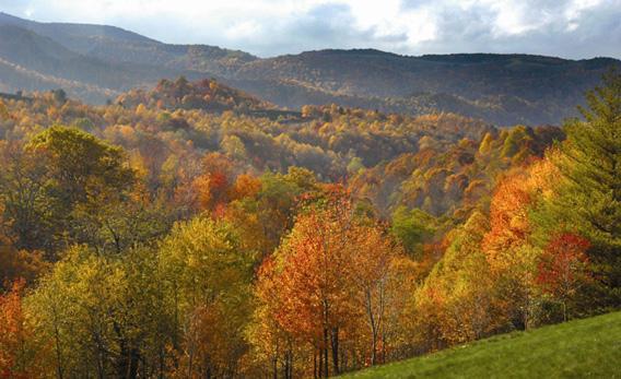 George Washington and Jefferson National Forest near Chatham, Va.