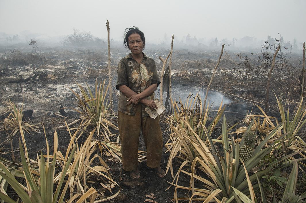 indonesia fire photos.
