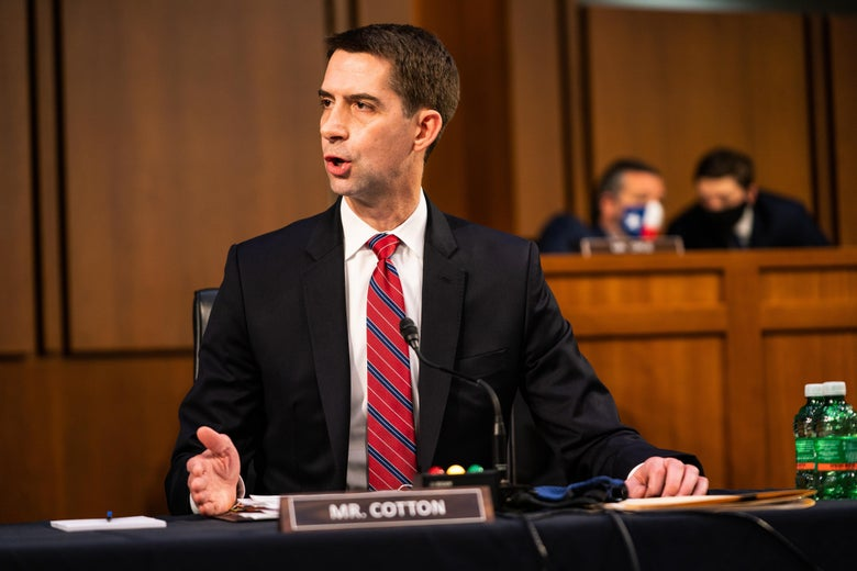 Tom Cotton speaks and gestures.