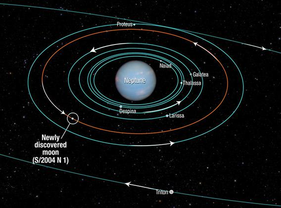 orbits of Neptune's moons