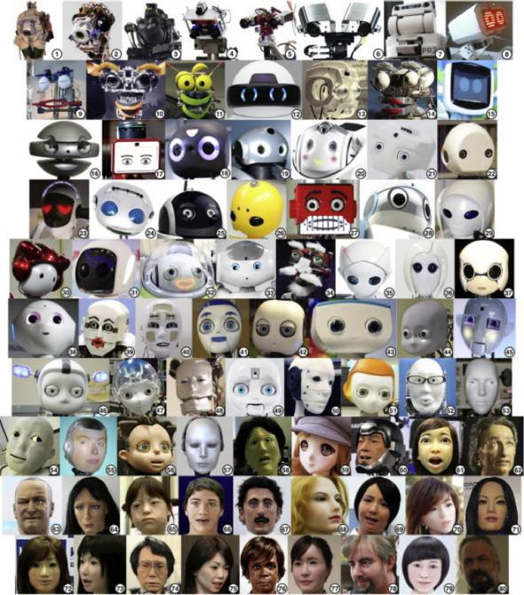 Wild-type robot face stimuli numbered and displayed in ascending