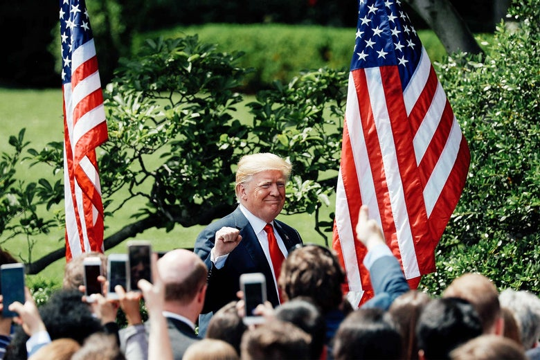 "Donald Trump pumps his fist as he departs his ""Celebration of America"" event on the South Lawn of the White House in Washington on Tuesday."