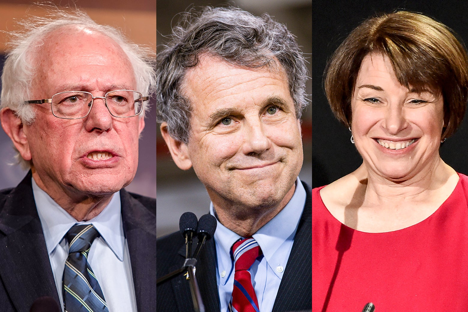 Bernie Sanders, Sherrod Brown, and Amy Klobuchar.
