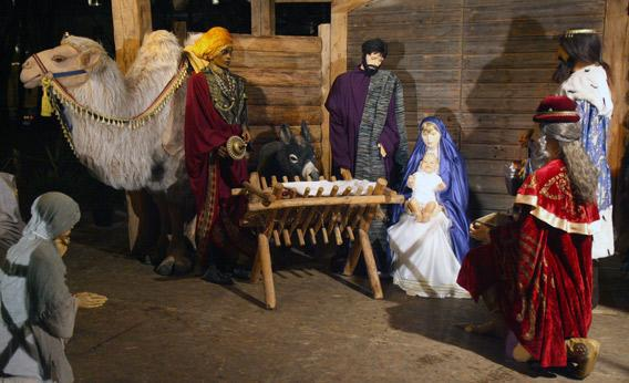 A traditional religious Nativity scene in front of the Roman Catholic Cathedral of Vilnius.