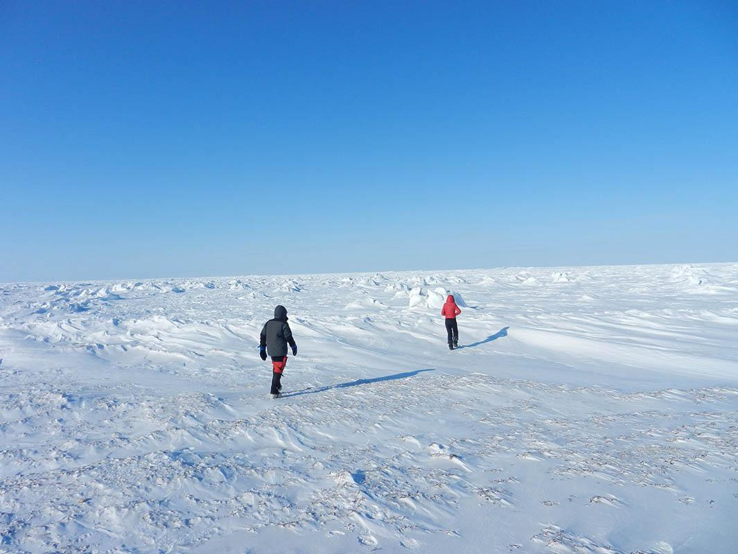 Dark patches on the snow are visible when you walk out onto a frozen Hudson Bay.