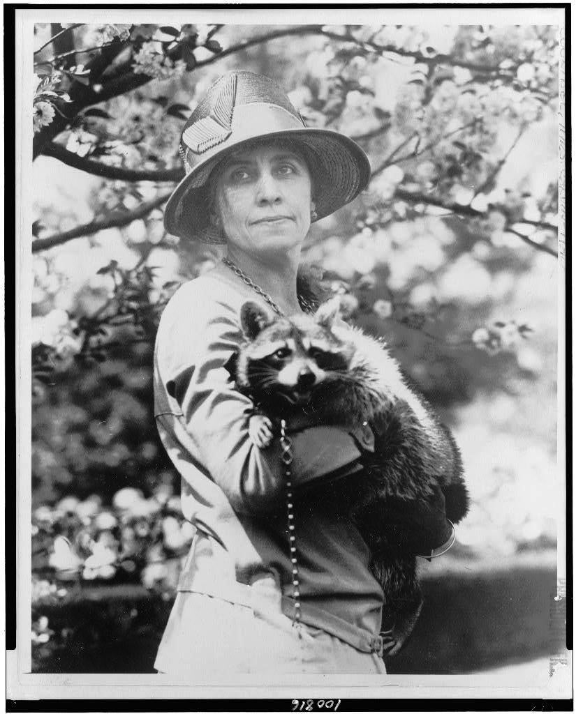 Grace Coolidge and her pet raccoon