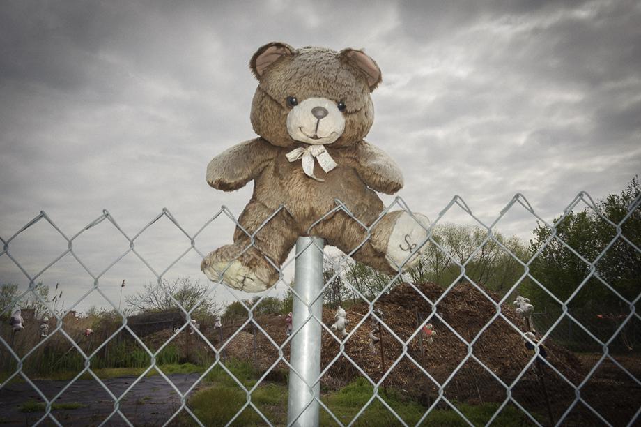 Teddy bear between Hendrix Creek and the Belt Parkway