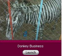 Donkey Business. Click image to launch.