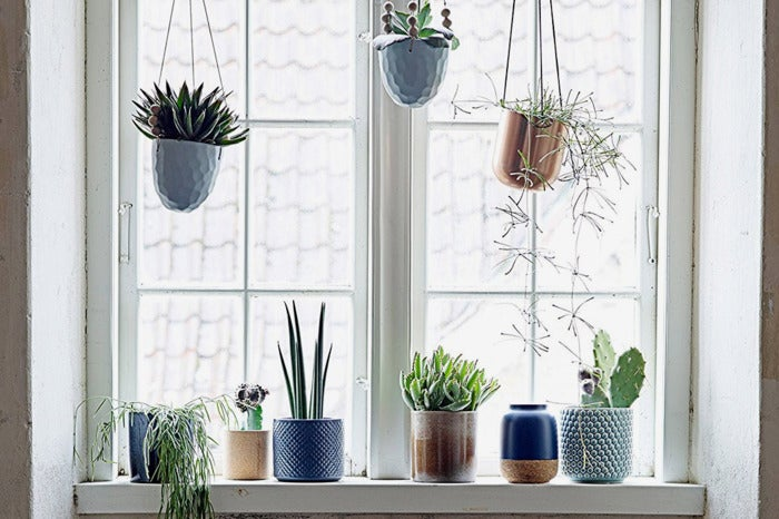 Various planters in a window.