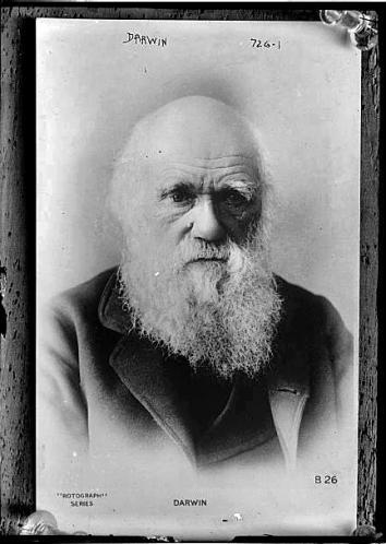 Charles Darwin, circa 1870, glass negative.