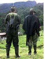 FARC guerrillas. Click image to expand.