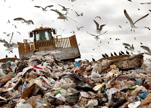 A landfill.