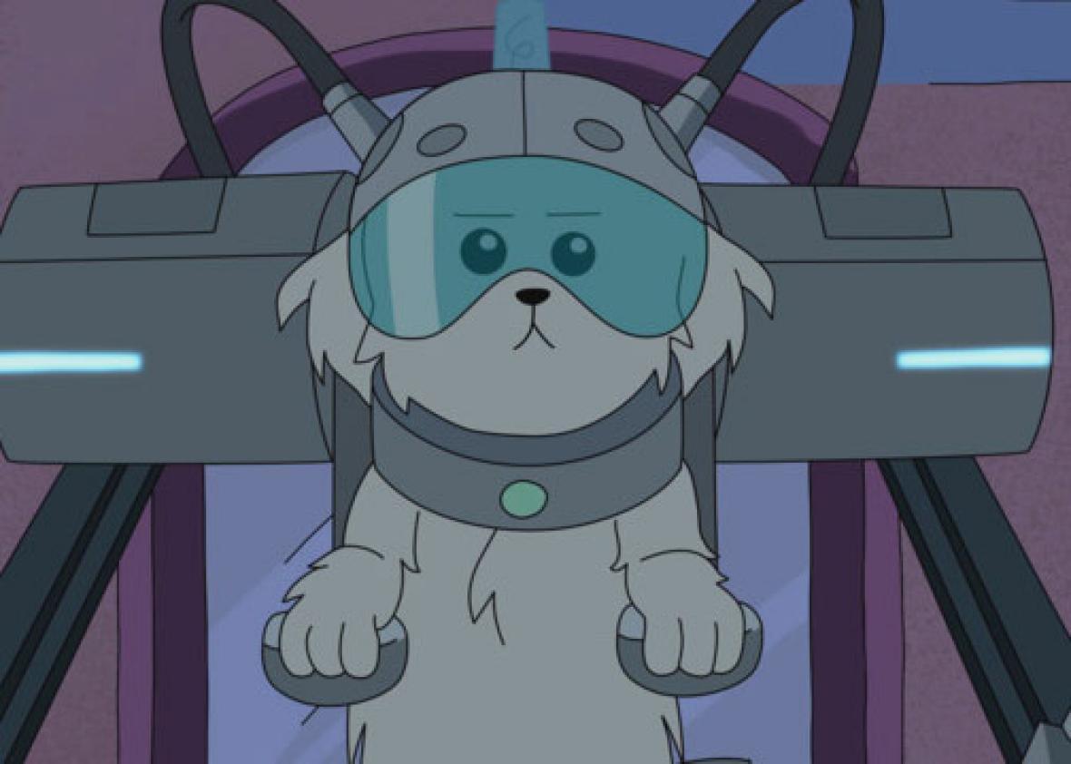 """Cybernetic dog on """"Rick & Morty"""" season 1, episode 2 """"Lawnmower Dog"""""""