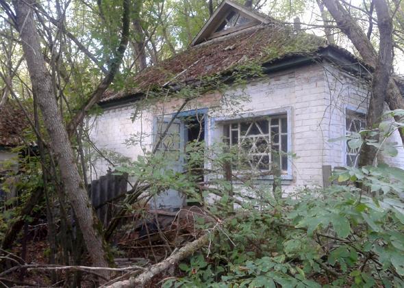 Anonymous: The Babushkas of Chernobyl