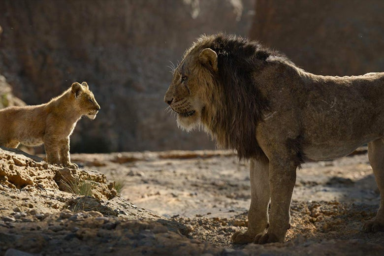Two lions, one young and one older, in The Lion King.