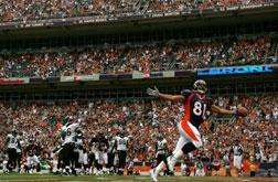 Nate Jackson #81 of the Denver Broncos. Click image to expand.