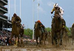 Calvin Borel atop Super Saver crosses the finish line to win the 136th running of the Kentucky Derby on May 1, 2010. Click image to expand.