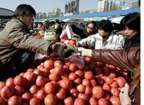 A Chinese vendor sells tomatoes to customers          Click image to expand.