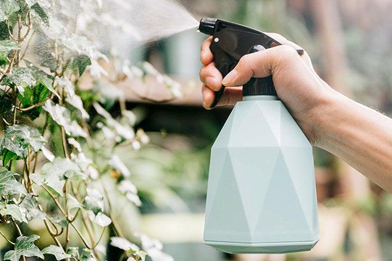 Repugo Spray Bottle