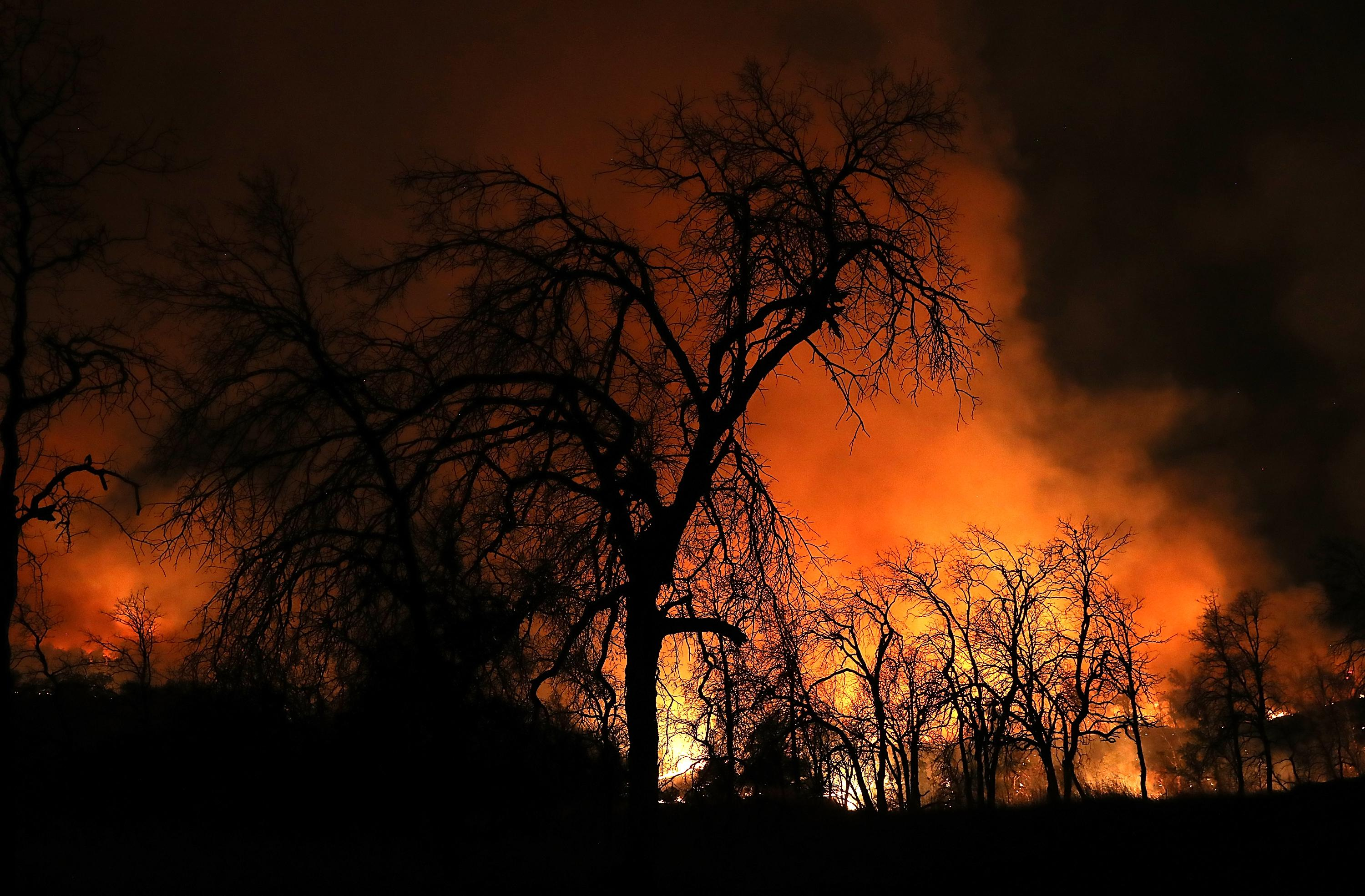 REDDING, CA - JULY 27:  An orange glow from the Carr Fire lights up burnt trees as the fire burns through dry brush on July 27, 2018 in Redding, California. A firefighter was killed battling the fast moving Carr Fire which has burned over 28,000 acres and destroyed dozens of homes. The fire is reportedly only 6 percent contained.  (Photo by Justin Sullivan/Getty Images)