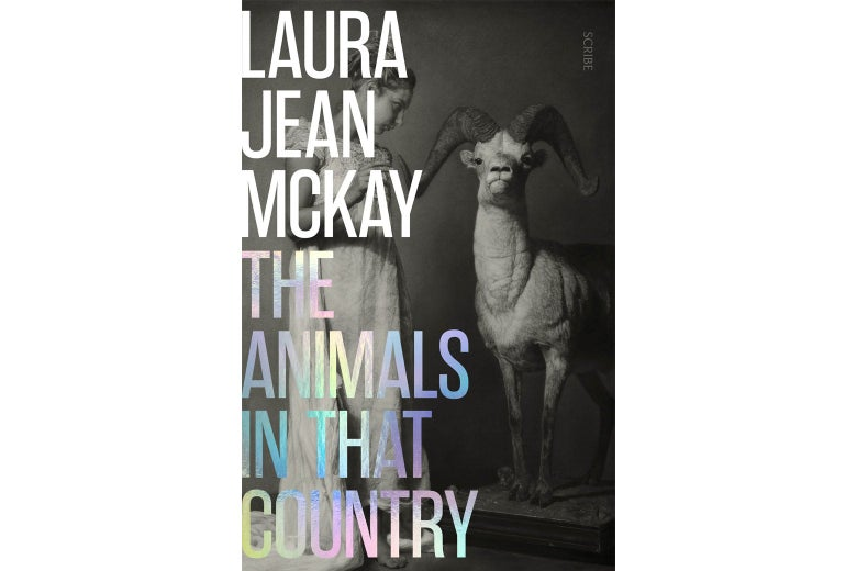 The cover of The Animals in That Country.