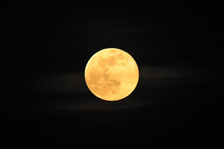 Yellow moon in the night sky.