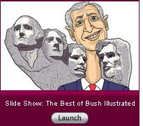 Click here to launch a slide show on the best of Bush Illustrated.