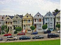 A row of painted ladies. Click image to expand.