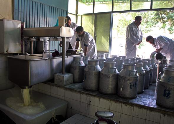 Dairy shop in Kabul.