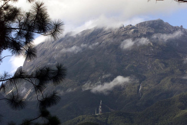 Mount Kinabalu is seen through clouds and trees.
