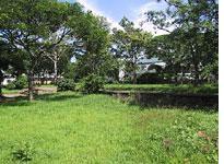 The bush creeps up on Lilongwe's Capital Hill