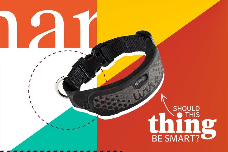A Link AKC Smart Collar.