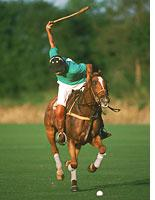 ESPN2 now features polo. Click image to expand.