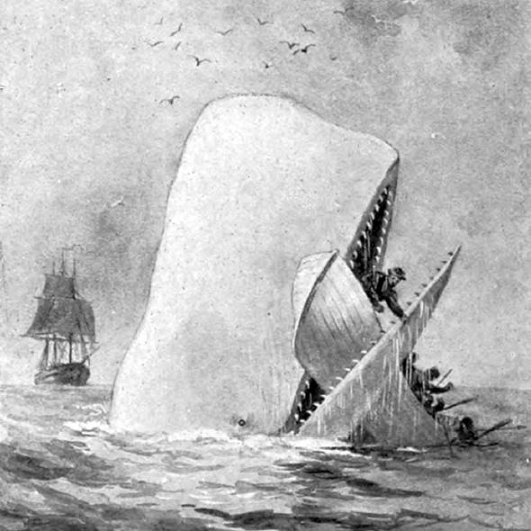Illustration from an early edition of Moby Dick